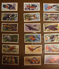 Select from a number of Brooke Bond TROPICAL BIRDS Tea Cards