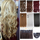Real Long Full Head Clip in On Hair Extensions  One Piece 5Clips Brown Blonde MJ