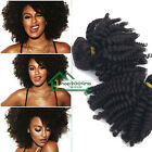 100% Virgin Afro Kinky Curly Hair Remy Brazilian Human Hair Extensions Weave