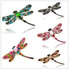 New Women Magnificent Rhinestone Crystal Lovely Dragonfly Alloy Pin & Brooch SA