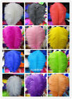 Wholesale 10-100 pcs High Quality Natural OSTRICH FEATHERS 6-24 inch/15-60 cm