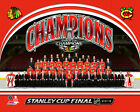 Chicago Blackhawks 2015 Stanley Cup Champions Formal Team Photo (Select Size)
