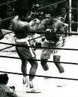 Joe Frazier vs. Muhammad Ali Fight of the Century Action Photo (Select Size)
