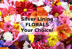 SILVER LINING Florals - Your Choice!