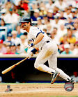 Don Mattingly New York Yankees MLB Action Photo DL003 (Select Size)