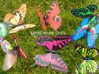 10% OFF LAST FEW BUTTERFLY BUTTERFLIES ON STICKS GARDEN DECORATIONS ORNAMENTS