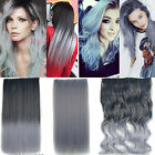 Women Wavy Straight Gray Ombre 3/4 Full Head Clip in Hair Extensions Hairpiece