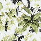 Birds Trees Wallpaper Exotic Tropical White Green International Tropical Leaves