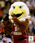 Boston College Eagles Football, Basketball, Hockey Photos (Select Image & Size)