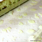Cellophane Wrap *Baby Prints - Ivory* 5 / 10 / 20 mtrs *Rolled for Posting*