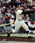 Frank Quilici Minnesota Twins 1965 World Series Photo SZ143 (Select Size)
