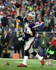Tom Brady New England Patriots 2016 NFL Playoff Action Photo SQ209 (Select Size) on eBay