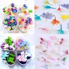 Mixed Dried Flowers Nail Art DIY Bottle Preserved Flower Manicure Decoration DIY