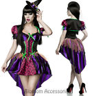 K231 Pretty Good Witch Horror Ladies Halloween Fancy Dress Costume Outfit + Hat