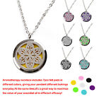 Hot Essential Oil Perfume Diffuser Necklace Stainless Steel Frame Keeper Pendant