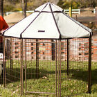Advantek Advantek Select Pet Gazebo