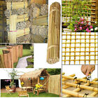 4ft (10-12mm)Extra Strong Bamboo Canes Screen Fencing Garden Fence Plant Support