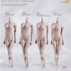 Phicen 1/6 Scale Female Seamless Women Sexy Body Skeleton S01A S04B S07C S10D