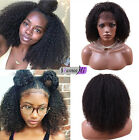 Afro Kinky Curly WIgs Brazilian Human Hair Lace Front Wigs Full Lace Wigs