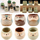 Mini Ceramic Owl Succulent Plant Container Pot Flower Planter Garden Home Decor