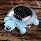 Mini Solar Powered Energy Cute Turtle Tortoise Gadget Gift Educational Toy CHIC