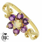 BJC® 9ct Yellow gold Amethyst & Opal Daisy Cluster Dress Ring ring R275