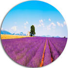Intention Art 'Remote House and Tree in Lavender Field' Photographic Print on Metal