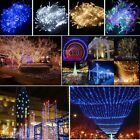 100/200/300/500/1000 LED Fairy String Lights Xmas Garden Tree Outside Décor Lamp