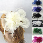 Lady Woman Fascinator Feather Wedding Party Pillbox Hat Headband Clip Veil