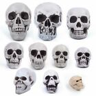 Multi Size Human Skull Head Halloween Decor Skeleton Coffee Bars Home Ornament
