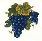 Blue Grape Cluster Grapes Select-A-Size Waterslide Ceramic Decals Xx  image