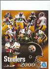 2000 PITTBURGH STEELERS 8X10 NFL PICTURE PHOTO