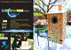 Bird House Kit For Kids DIY Bluebird House a Gold Stamped Box Includes Metal ... photo
