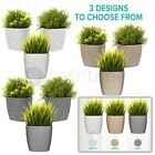 3 X Modern Plastic Flower Plant Pot Decorative Indoor Planter With Saucer Decor
