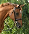 KL Select Red Barn Icon Hunter Bridle