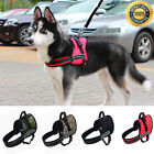 No-pull Dog Harness Outdoor Adventure Pet Nylon Vest Padded Handle S/M/L/XL