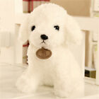 Realistic Teddy Dog Lucky Simulation Plush Stuffed Lovely Animal Cuddly Doll Toy