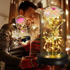 Galaxy Rose Eternal Flower Led Light In Glass Home Decor Christmas Gifts