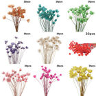 30pcs Natural Dried Flowers Flower Bouquet Wedding Party Floral Art Home Decor