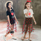 Teen Kids Girls Heart Shape Short Sleeve T Shirt Tops Tulle Dress Outfits Sets