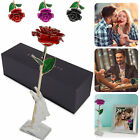 Luxury Gold Plated Rose Flower Dipped 24K Valentine Day Love Gift Romantic Long