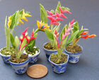 Single Bird Of Paradise In A Pot Dolls House Miniature