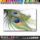 Peacock Feathers ANIMALS  Canvas Print Framed Photo Picture Wall Artwork WA