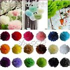 "20 Tissue Paper Pom Poms Wedding Birthday Party Home Decoration Favor 8""/10""/15"""