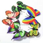New 10pcs 3D Butterfly Fridge Magnets Room Car Wall Decorations Crafts 7x5.5cm