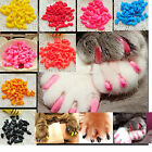 HOT Colorful 20PCS Soft Cat Pet Nail Caps Claw Control Paws Off + Adhesive Glue