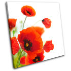 Poppies Flower Floral SINGLE CANVAS WALL ART Picture Print VA