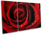Roses Love Flowers Floral TREBLE CANVAS WALL ART Picture Print VA