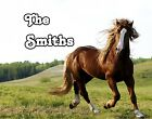 Western Horse Scene GLOSSY Photo Picture ** PERSONALIZED ** Wall Decor / Print