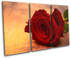 Roses Flowers Love Floral TREBLE CANVAS WALL ART Picture Print VA